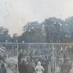opening(1978)